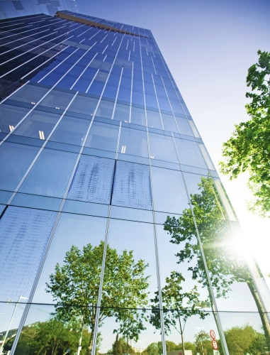 office_building_outside_view_tree_tork