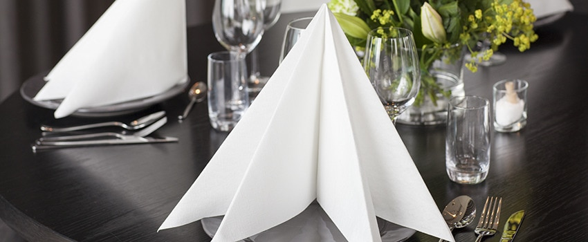 White Napkin Original.jpg