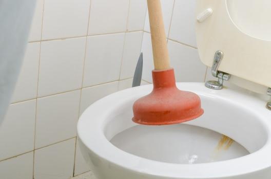 washroom-toilet-plunger-i223-505494024-300dpi.jpg